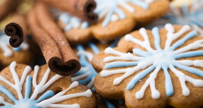 How To Make Perfect Holiday Gingerbread Cookies At Your Next Baking Shin Dig