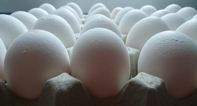 Eggs and Expiration Dates: How Long is Too Long