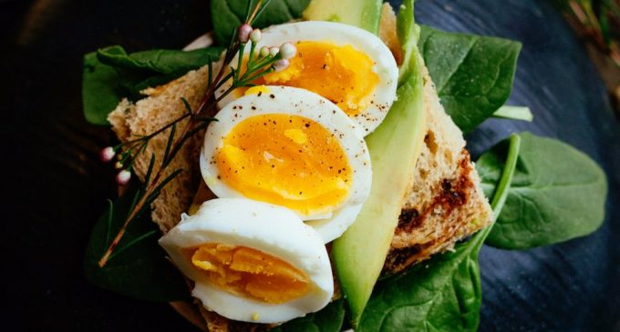 The Secrets of Eggs: 10 Tips That Will Change Everything