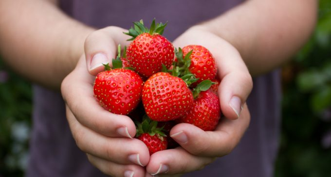 Add Flavor to Bland Strawberries With These 2 Powerful Techniques