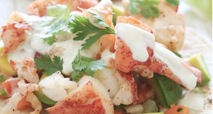 Try These Amazing Lobster Tacos