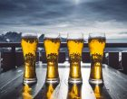 "7 Beer ""Facts"" We Have Been Getting Wrong This Whole Time"